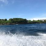 バリ島で名所は勿論、色々事件勃発の観光記。